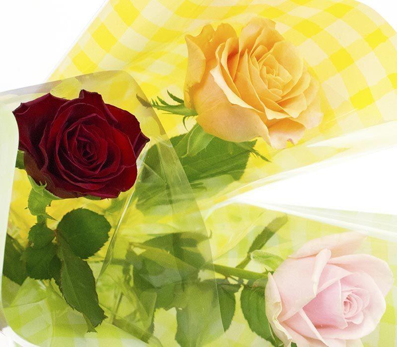 「ONE EVESSA de ONE Rose」バラの一本ラッピング